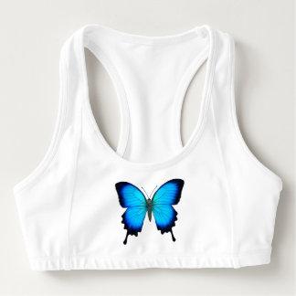 La mariposa azul de Ulises Swallowtail se divierte Bra Deportivo