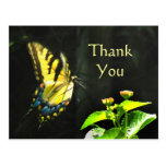 La mariposa colorida le agradece postal