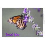 La mariposa de monarca le agradece cardar felicitación