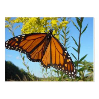 La mariposa de monarca separa sus alas tarjetas de visita grandes