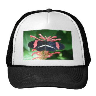 La mariposa del bolso del esplendor consigue lista gorras de camionero