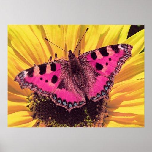 La mariposa es una flor del vuelo impresiones