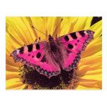 La mariposa es una flor del vuelo tarjeta postal