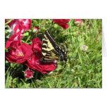 La mariposa (espacio en blanco) tarjeta