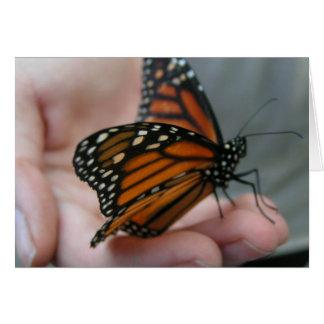 La mariposa le agradece cardar tarjeta de felicitación