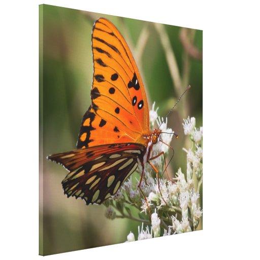 La mariposa majestuosa impresion de lienzo