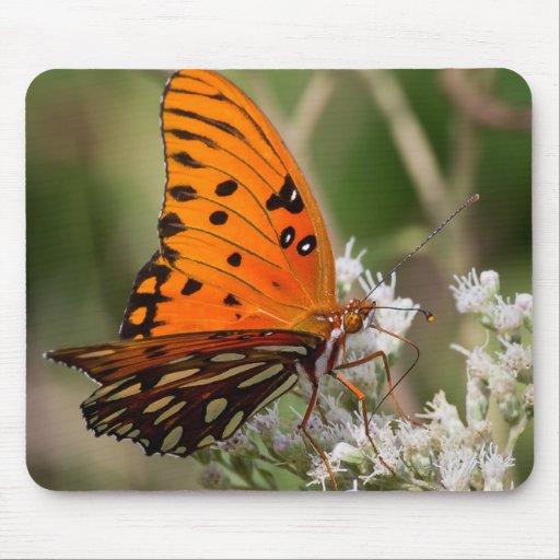 La mariposa majestuosa tapete de ratón