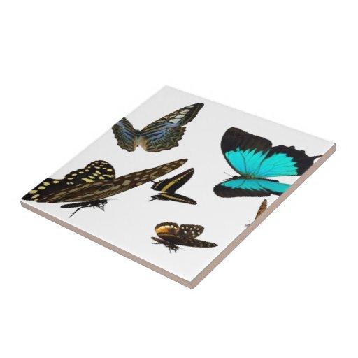 La mariposa multi, teja (2) tamaños