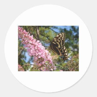 ¡La mariposa perfecta! Pegatina Redonda
