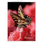 La mariposa rosada de la flor le agradece cardar tarjetas