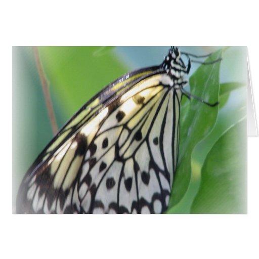 La mariposa se va volando la tarjeta de felicitaci