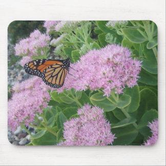 La mariposa Sedum florece la naturaleza Mousepad Tapete De Ratones