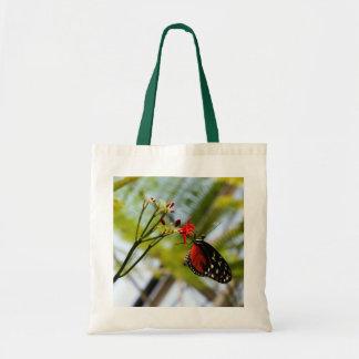 La mariposa sorbe la bolsa de asas