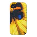 La mariposa y la margarita iPhone 4 carcasas