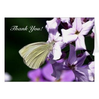 La mariposa y las flores le agradecen las tarjetas