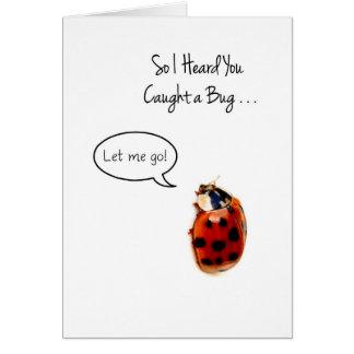 La mariquita divertida consigue bien, coge y lanza tarjeta de felicitación