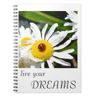 La mariquita vive su cuaderno de los sueños
