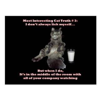 La mayoría del gato interesante #3.jpg postales