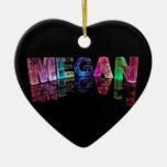 La Megan conocida en 3D se enciende (la fotografía Ornato