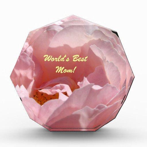¡La mejor mamá del mundo! Flor subió rosa de la pl