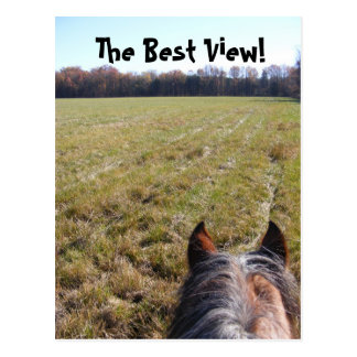 La mejor postal de la visión