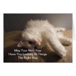 La mejor tarjeta del gato del Año Nuevo