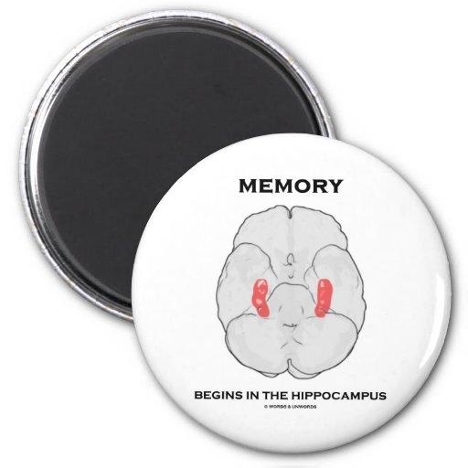 La memoria comienza en el hipocampo iman
