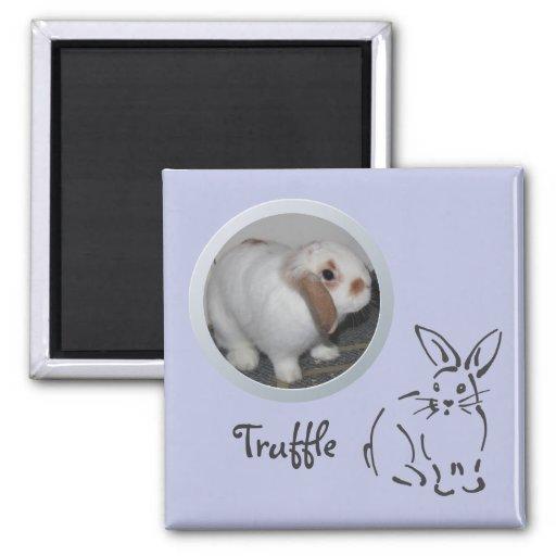 La memoria del conejo añade una foto iman para frigorífico