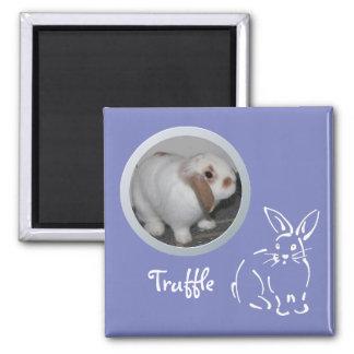 La memoria del conejo añade una foto imán cuadrado