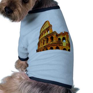 La memoria nunca olvida para siempre el colosseum  camisa de mascota