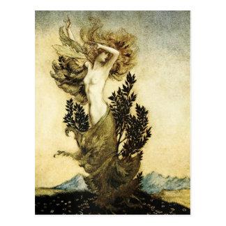 La metamorfosis de Daphne en un árbol Postales