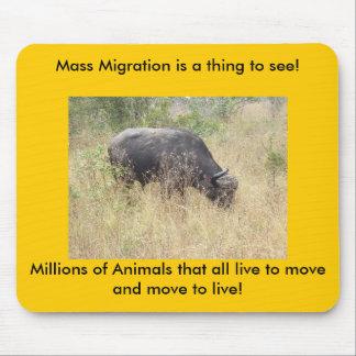 ¡La migración masiva es una cosa a considerar! Alfombrillas De Ratones