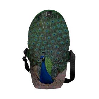La mini bolsa de mensajero del pavo real bolsa de mensajeria