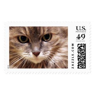 La mirada timbres postales