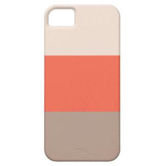 La moda raya la caja del iPhone 5 iPhone 5 Carcasa