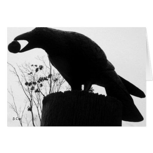 La mordedura del cuervo, S Cyr Tarjeta De Felicitación