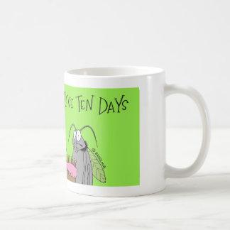 La mosca del vinagre tiene 10 días taza