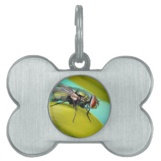 La mosca placa de nombre de mascota