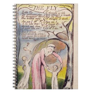 """""""La mosca"""", platea 37 de 'canciones de la inocenci Cuadernos"""