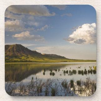 La mota del oso refleja en el lago butte del oso c posavasos
