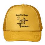 La música country está en mis genes gorros bordados
