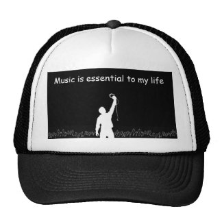 La música de Armin es esencial para mi vida Gorro
