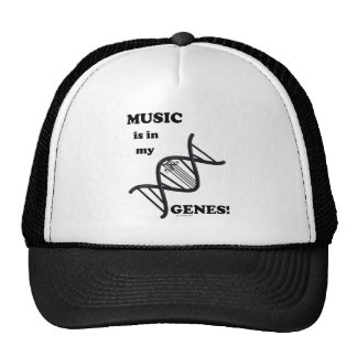 La música está en mis genes gorro