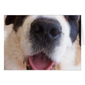 La nariz de Ruthie Tarjeta De Felicitación