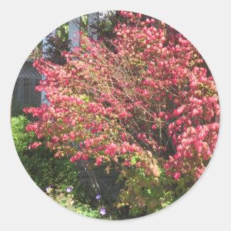 La naturaleza ama color verde de la temporada de pegatina redonda