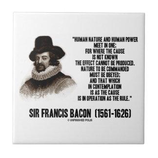 La naturaleza de sir Francis Bacon que se ordenará Azulejos Ceramicos