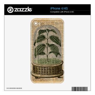 La naturaleza del arte del diccionario de la iPhone 4S calcomanías