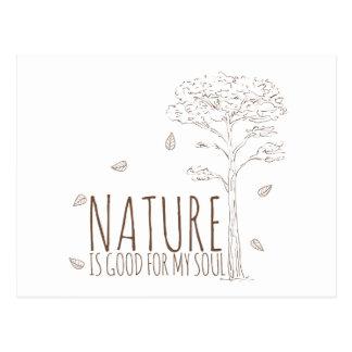 La naturaleza es buena para mi alma - V2 Postales