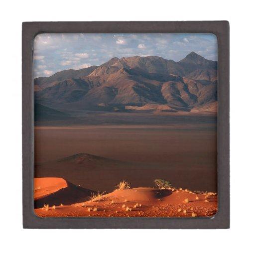 La naturaleza fuerza el desierto de Namib del aman Cajas De Joyas De Calidad