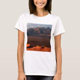 La naturaleza fuerza el desierto de Namib del Playera